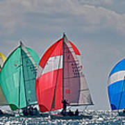 Florida Spinnakers Poster by Steven Lapkin