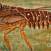 Florida Spiny Lobster Poster