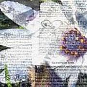 Flower Art Print 5 Poster