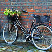 Flower Basket Bicycle Poster