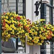 Flower Baskets  Poster