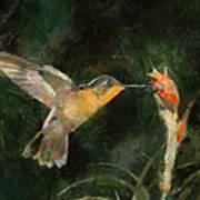 Flower Bird Poster
