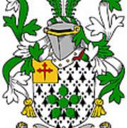 Flower Coat Of Arms Irish Poster