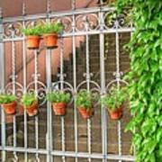 Flower Gates Poster