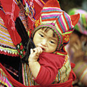 Flower Hmong Baby 01 Poster