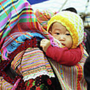 Flower Hmong Baby 04 Poster