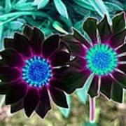 Flower Power 1456 Poster