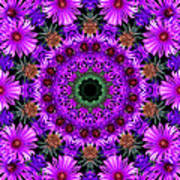 Flower Power Poster by Kristie  Bonnewell