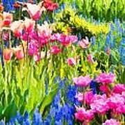 Flower Splash II Poster