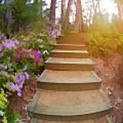 Flower Steps Poster
