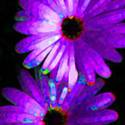 Flower Study 6 - Vibrant Purple By Sharon Cummings Poster by Sharon Cummings