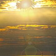 Flower Sun Poster