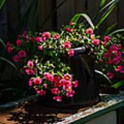 Flowering Coffee Pot Poster