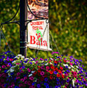 Flowerpot In Bala Poster