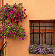 Flowers And A Window Poster