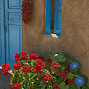 Flowers At Ranchos De Taos Poster