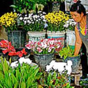 Flowers For Sale In Marketplace In Tachilek-burma Poster