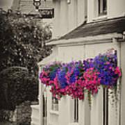 Flowers In Cashel Poster