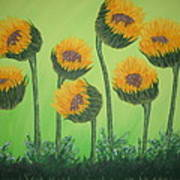 Flowers In Menopause  Poster