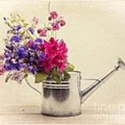 Flowers In Watering Can Poster