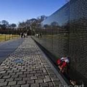 Flowers Left At The Vietnam War Memorial Poster