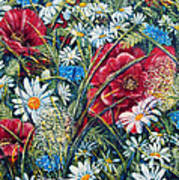 Flowers Poppies And Daisies No.5 Poster by Drinka Mercep