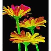 Flowers Quick Strokes Poster