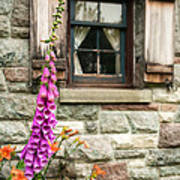 Flowers Stone And Old Country Window Poster