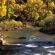 Flowing Through Zion National Park Poster