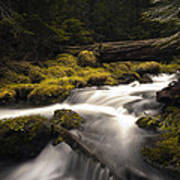 Flowing Waters - Olympic National Park Poster
