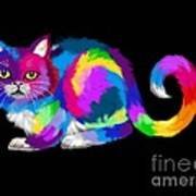 Fluffy Rainbow Calico Poster