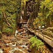Flume Gorge At Franconia Notch Poster