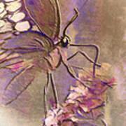 Fluorescent Butterfly Poster by Jill Balsam