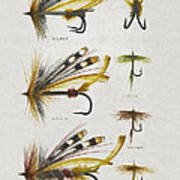 Fly Fishing Flies Poster