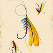 Fly Fishing-jp2098 Poster