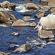 Fly Fishing On Mountain River Poster