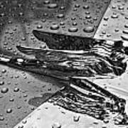 Flying Lady Hood Ornament In B And W Poster