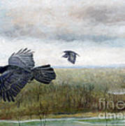 Flying To The Roost Poster by Barb Kirpluk