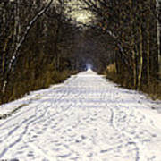 Fog On The Winter Macomb Orchard Trail Poster