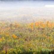 Foggy Country Autumn Morning Poster