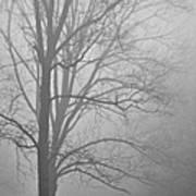 Foggy Days Poster