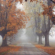 Foggy Driveway Poster by Wendell Thompson