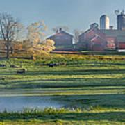 Foggy Farm Morning Poster