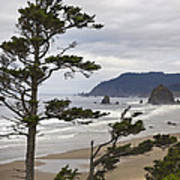 Foggy Morning At Tolovana Beach Oregon 2 Poster