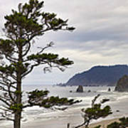 Foggy Morning At Tolovana Beach Oregon Poster