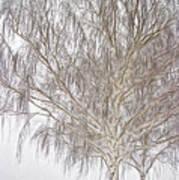Foggy Morning Landscape - Fractalius 4 Poster by Steve Ohlsen