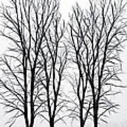 Foggy Morning Landscape - Fractalius  Poster by Steve Ohlsen