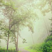 Foggy Path - Blue Ridge Parkway Poster