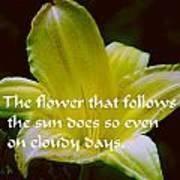 Follow The Sun Poster