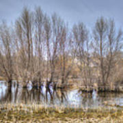 Folsom Dried Pond  Poster
